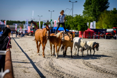 33.-Babolnai-Gazdanapok-Nagy-Istvan-agrarminiszter-5