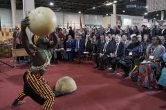 Afrika expó megnyitó ünnepsége - Déli Nyitás