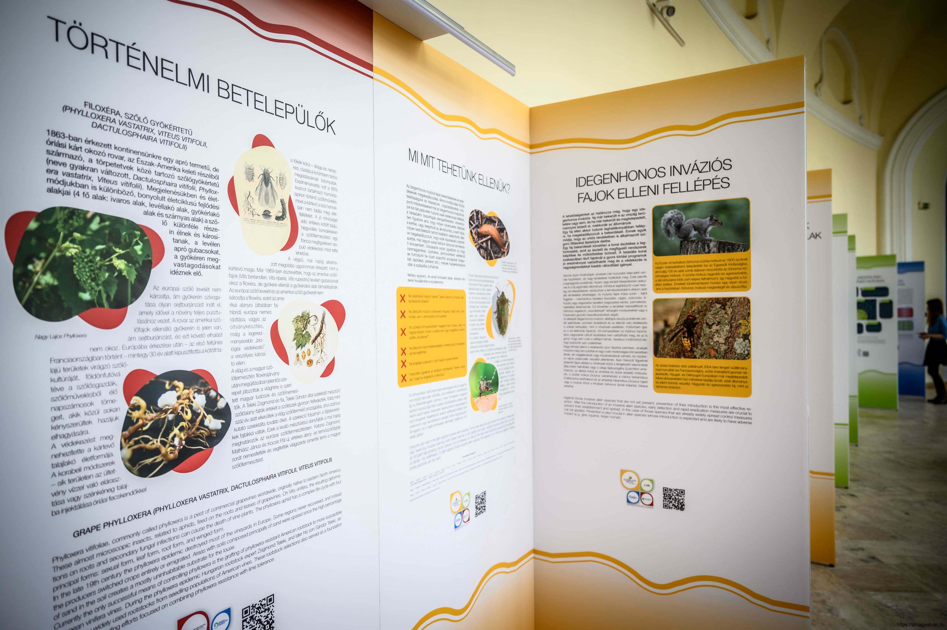 Változó-világunk-kihívásai-kiállítás-és-konferencia-Nagy-István-miniszter-3